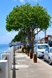 Front Street sidewalk, Lahaina, Maui, Hawaii 151