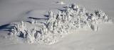Winter Wonderland on Mt Index, Cascade Mountains, Washington State 861