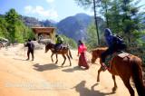 Riding Horses to TaktshangGoemba