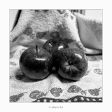 02/01/2018 · Tres pomes