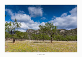 31/03/2018 · La Ballestera - Rossell (Baix Maestrat)
