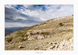 En vistes al Mas de la Belluga · Ares del Maestrat (Comarca de l'Alt Maestrat)