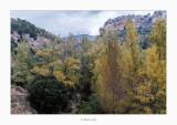14/10/2018 · El Cervol al seu pas per Vallibona (Els Ports)