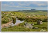 Dartmoor Leeden Tor