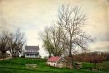 Pastoral Peace at Milky Way Farm