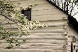 The Downingtown Log House, Circa 1701 #2