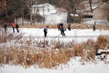 Ice Skaters on The Ponds