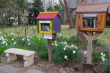 Double Free Library in Springtime in Chestnut Hill