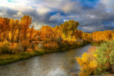 Fall on the Gunnison River