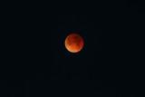 Super, Blue, Blood Moon?