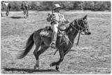 CSA Cavalry