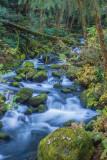Elk Creek, Coos County, Oregon