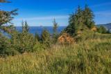 The Oregon Coast Trail