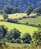 Aveyron Countryside 3