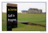 Caution....Golf In Progress