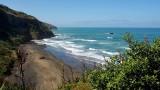 Muriwai Beach Gannets Summer 2019