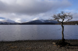 Glen Luss hills from Milarrochy Bay, Loch Lomond