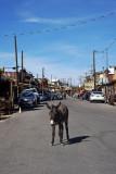 Overview of Main Street, Oatman