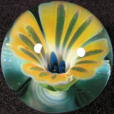 #32: Sunny Side Up Size: 1.25 Price: $55