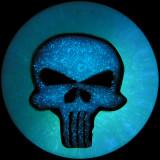 #53: Punisher Max Size: 0.91 Price: $60