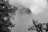 Yosemite in the mist