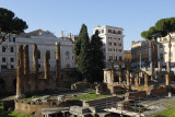 Ruth took the tram later to find Largo di Torre Argentina