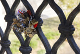 Love locks near Vatican - very European