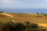 Algeria had a lot of farmland.
