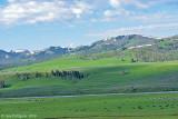 Lamar River Valley
