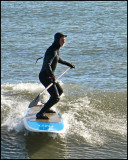 Paddle Surfing Guy