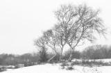 D4S_3394F winters landschap.jpg