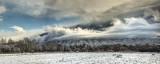 Winter Weather & Cranes