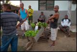 Iznaga farmers with bananas and sallad