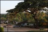 Iznaga - a small village near Trinidad
