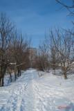 parc-vacaresti-iarna-bucuresti_06.jpg