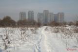 parc-vacaresti-iarna-bucuresti_08.JPG