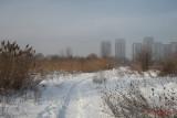 parc-vacaresti-iarna-bucuresti_18.JPG