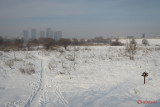 parc-vacaresti-iarna-bucuresti_21.JPG
