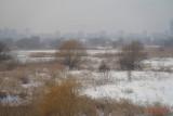 parc-vacaresti-iarna-bucuresti_30.JPG