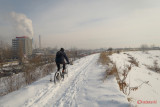 parc-vacaresti-iarna-bucuresti_32.JPG