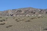 Jargalant Hairhan mountain_MG_4581-111.jpg