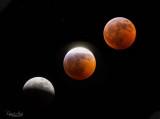 Super blood wolf moon 2019.