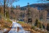 la forêt de Grendelbruch en hiver
