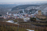 a walk from the sunny vineyard to the snowy mountains