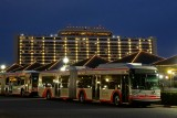 Contemporary Resort and busses