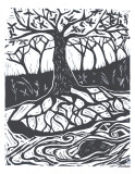 roots n limbs