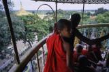 Monywa, Thanboddhay Temple