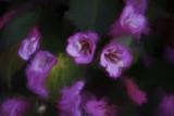 Painted _14.JPG