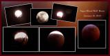 Super Blood Wolf Moon & Eclipse