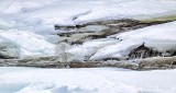 Icy Little Rapids P1050632